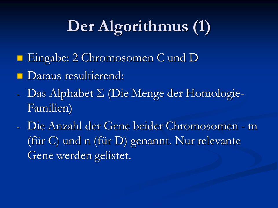 Der Algorithmus (1) Eingabe: 2 Chromosomen C und D Eingabe: 2 Chromosomen C und D Daraus resultierend: Daraus resultierend: - Das Alphabet Σ (Die Menge der Homologie- Familien) - Die Anzahl der Gene beider Chromosomen - m (für C) und n (für D) genannt.