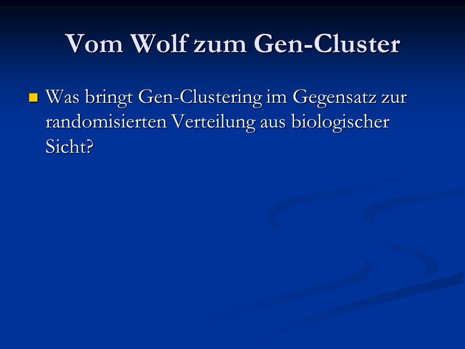 Vom Wolf zum Gen-Cluster Was bringt Gen-Clustering im Gegensatz zur randomisierten Verteilung aus biologischer Sicht? Was bringt Gen-Clustering im Geg