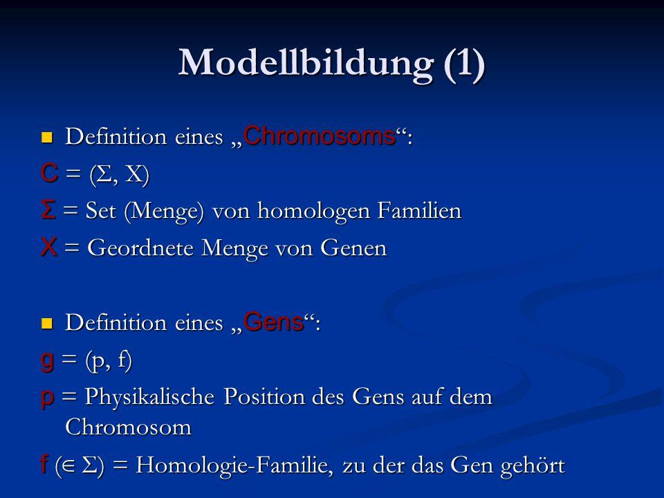 """Modellbildung (1) Definition eines """" Chromosoms : Definition eines """" Chromosoms : C = (Σ, X) Σ = Set (Menge) von homologen Familien X = Geordnete Menge von Genen Definition eines """" Gens : Definition eines """" Gens : g = (p, f) p = Physikalische Position des Gens auf dem Chromosom f ( ∈ Σ) = Homologie-Familie, zu der das Gen gehört"""