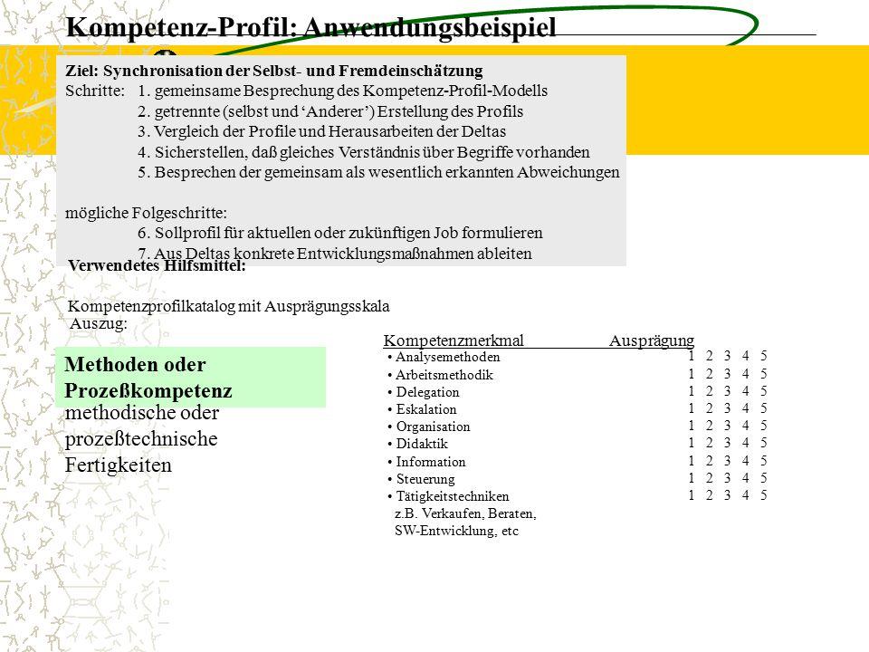 Kompetenz-Profil: Anwendungsbeispiel Methoden oder Prozeßkompetenz methodische oder prozeßtechnische Fertigkeiten Analysemethoden Arbeitsmethodik Dele