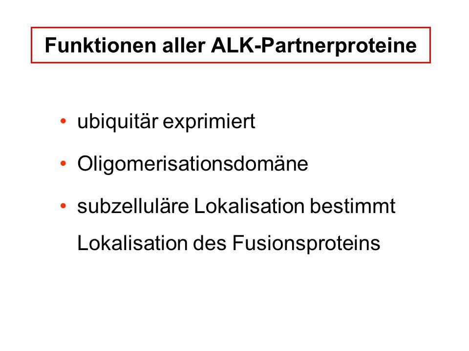 Funktionen aller ALK-Partnerproteine ubiquitär exprimiert Oligomerisationsdomäne subzelluläre Lokalisation bestimmt Lokalisation des Fusionsproteins