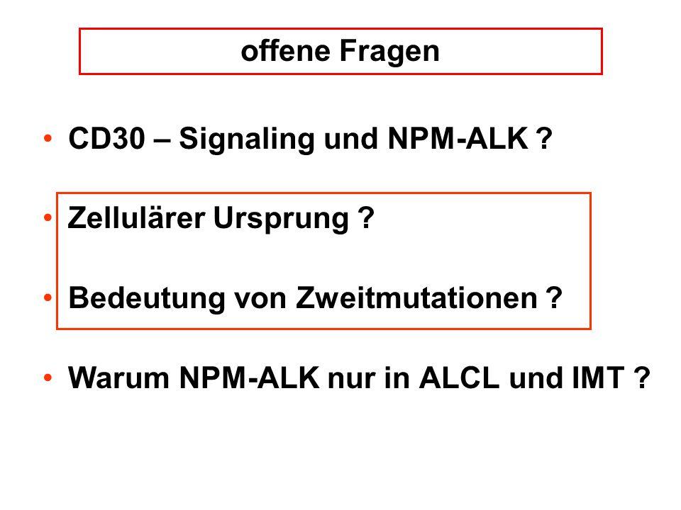 CD30 – Signaling und NPM-ALK ? Zellulärer Ursprung ? Bedeutung von Zweitmutationen ? Warum NPM-ALK nur in ALCL und IMT ? offene Fragen