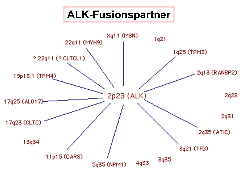 ALK-Fusionspartner