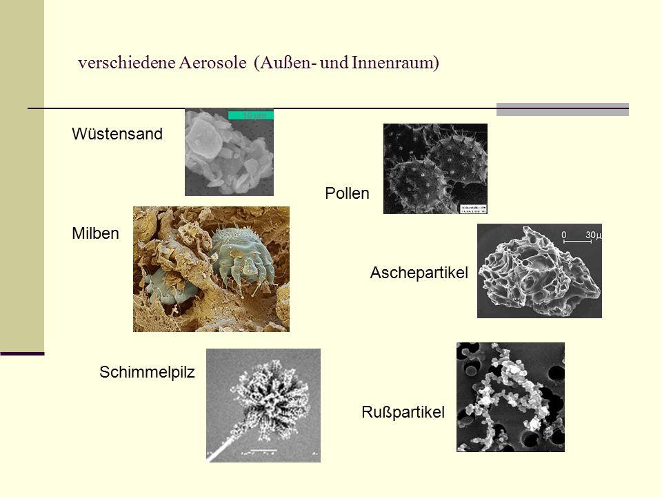 verschiedene Aerosole (Außen- und Innenraum) Wüstensand Pollen Milben Aschepartikel Schimmelpilz Rußpartikel