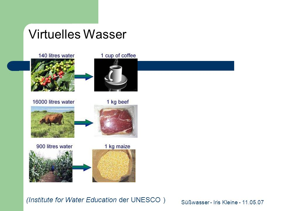 Süßwasser - Iris Kleine - 11.05.07 Virtuelles Wasser (Institute for Water Education der UNESCO )