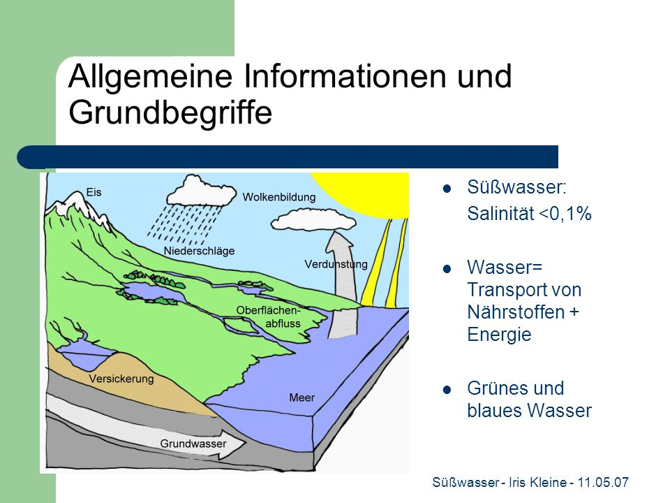 Süßwasser - Iris Kleine - 11.05.07 Allgemeine Informationen und Grundbegriffe Süßwasser: Salinität <0,1% Wasser= Transport von Nährstoffen + Energie Grünes und blaues Wasser