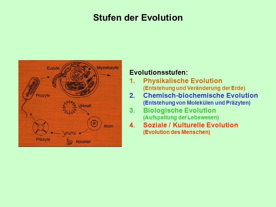 Stufen der Evolution Evolutionsstufen: 1.Physikalische Evolution (Entstehung und Veränderung der Erde) 2.Chemisch-biochemische Evolution (Entstehung von Molekülen und Präzyten) 3.Biologische Evolution (Aufspaltung der Lebewesen) 4.Soziale / Kulturelle Evolution (Evolution des Menschen)