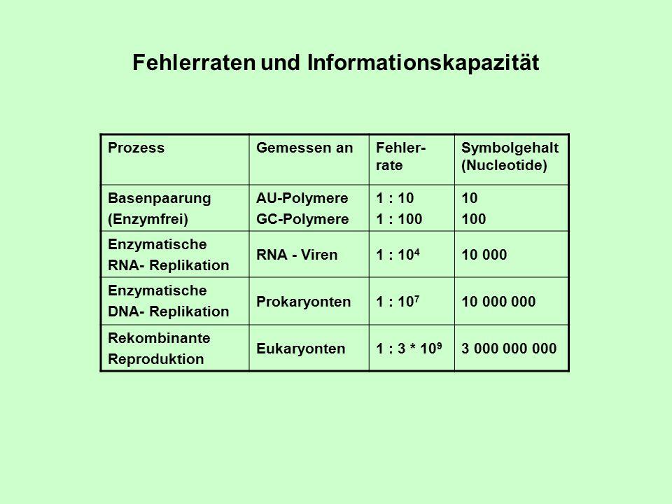 Fehlerraten und Informationskapazität ProzessGemessen anFehler- rate Symbolgehalt (Nucleotide) Basenpaarung (Enzymfrei) AU-Polymere GC-Polymere 1 : 10 1 : 100 10 100 Enzymatische RNA- Replikation RNA - Viren1 : 10 4 10 000 Enzymatische DNA- Replikation Prokaryonten1 : 10 7 10 000 000 Rekombinante Reproduktion Eukaryonten1 : 3 * 10 9 3 000 000 000