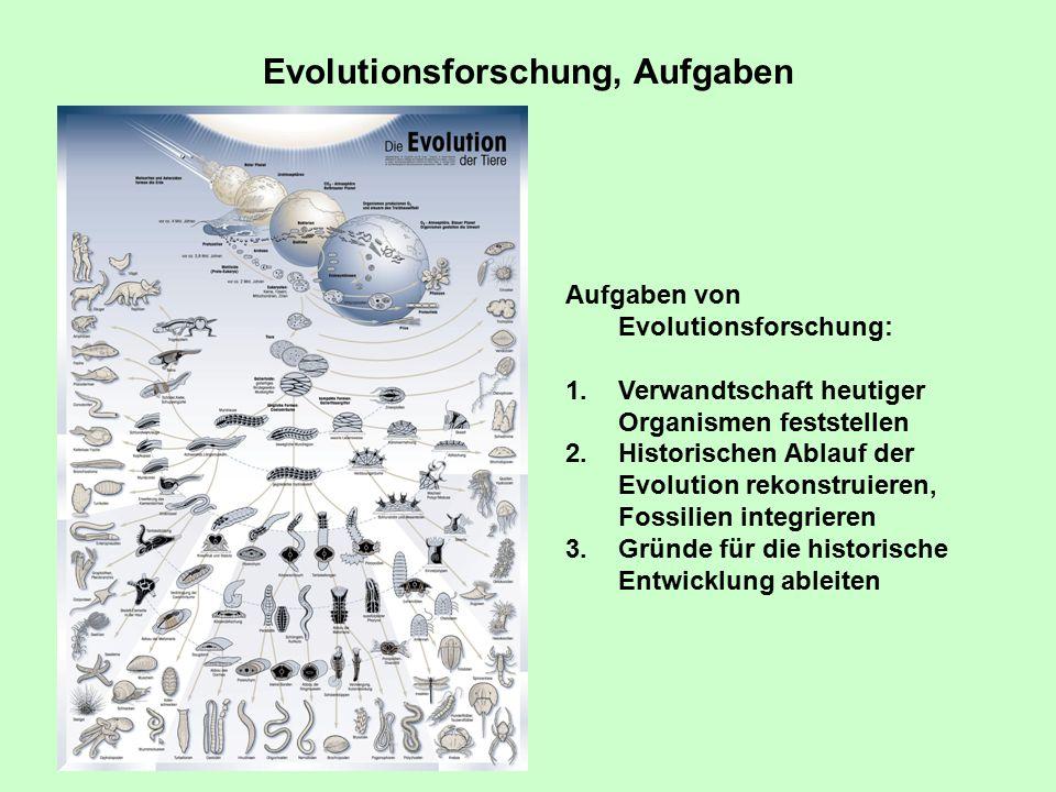 Der Urey-Miller-Versuch Simulation der frühen Erdatmosphäre Nachweis komplexer organischer Substanzen, u.a.