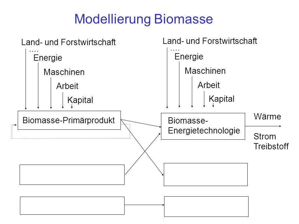 Modellierung Biomasse Biomasse-Primärprodukt Biomasse- Energietechnologie Land- und Forstwirtschaft Energie Maschinen Arbeit Kapital....