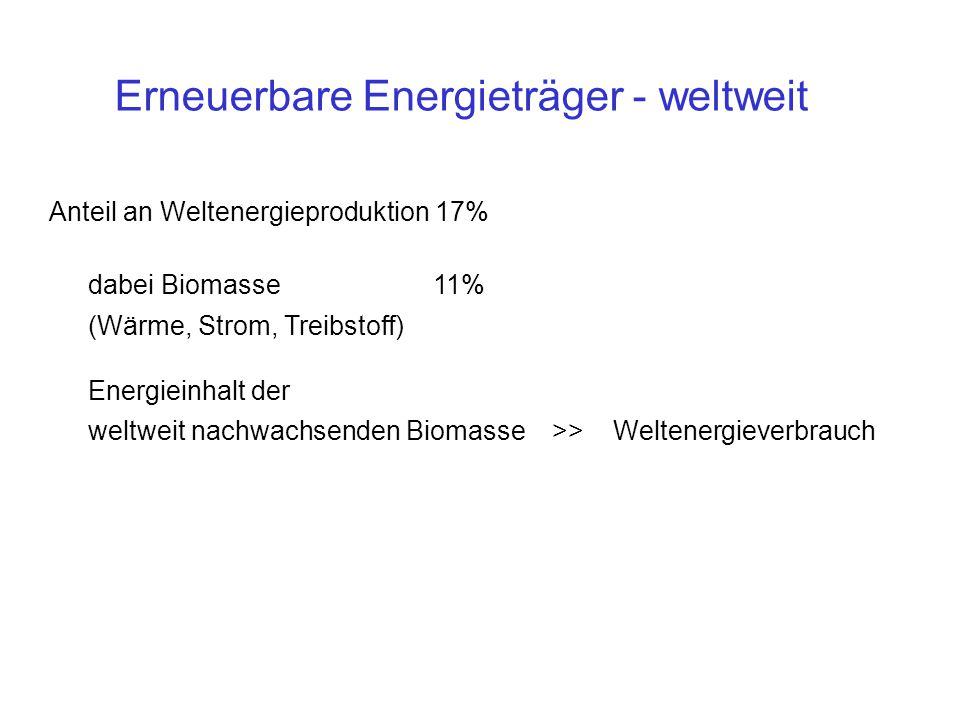 Anteil an Weltenergieproduktion 17% dabei Biomasse 11% (Wärme, Strom, Treibstoff) Energieinhalt der weltweit nachwachsenden Biomasse >> Weltenergieverbrauch Erneuerbare Energieträger - weltweit