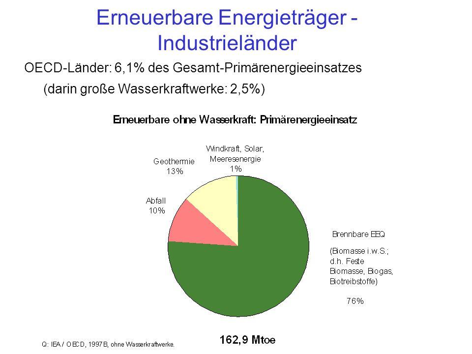 OECD-Länder: 6,1% des Gesamt-Primärenergieeinsatzes (darin große Wasserkraftwerke: 2,5%) Erneuerbare Energieträger - Industrieländer