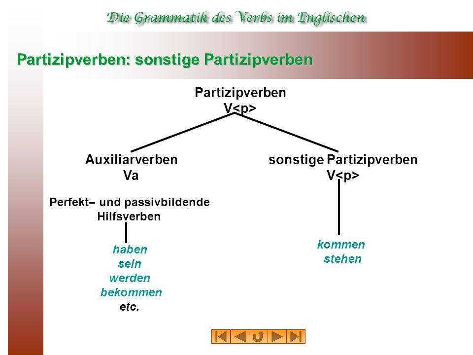 Partizipverben: sonstige Partizipverben Partizipverben V Perfekt– und passivbildende Hilfsverben Auxiliarverben Va sonstige Partizipverben V haben sei