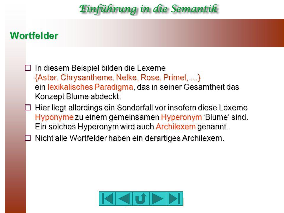Wortfelder  In diesem Beispiel bilden die Lexeme {Aster, Chrysantheme, Nelke, Rose, Primel, …} ein lexikalisches Paradigma, das in seiner Gesamtheit