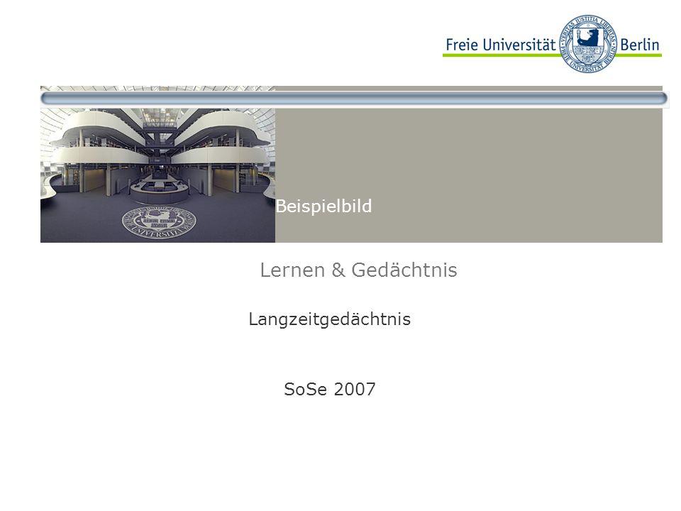 Beispielbild Lernen & Gedächtnis Langzeitgedächtnis SoSe 2007