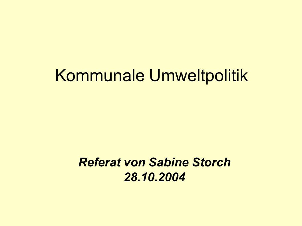 Kommunale Umweltpolitik Referat von Sabine Storch 28.10.2004