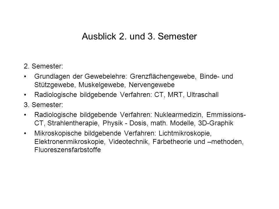 Ausblick 2. und 3. Semester 2. Semester: Grundlagen der Gewebelehre: Grenzflächengewebe, Binde- und Stützgewebe, Muskelgewebe, Nervengewebe Radiologis
