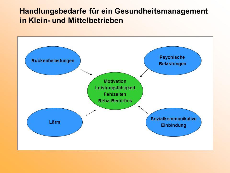 Handlungsbedarfe für ein Gesundheitsmanagement in Klein- und Mittelbetrieben Psychische Belastungen Rückenbelastungen Sozialkommunikative Einbindung M
