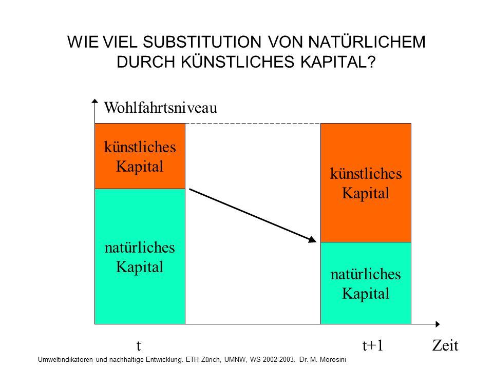 Umweltindikatoren und nachhaltige Entwicklung. ETH Zürich, UMNW, WS 2002-2003. Dr. M. Morosini WIE VIEL SUBSTITUTION VON NATÜRLICHEM DURCH KÜNSTLICHES