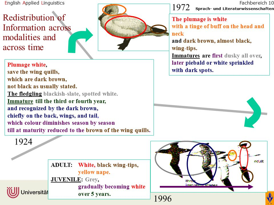 English Applied Linguistics Sprach- und Literaturwissenschaften Fachbereich 10 Plumage white, save the wing quills, which are dark brown, not black as usually stated.