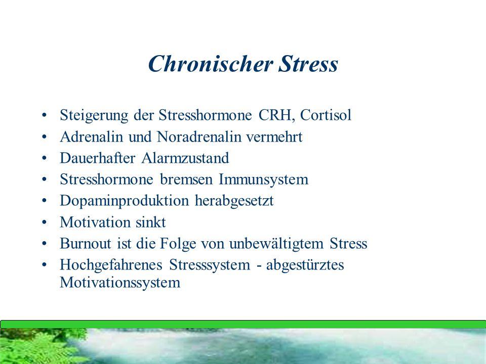 Steigerung der Stresshormone CRH, Cortisol Adrenalin und Noradrenalin vermehrt Dauerhafter Alarmzustand Stresshormone bremsen Immunsystem Dopaminprodu