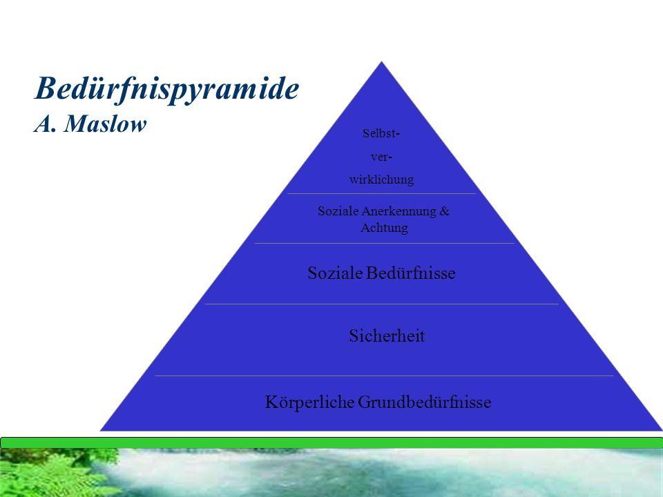 Bedürfnispyramide A. Maslow Körperliche Grundbedürfnisse Sicherheit Soziale Bedürfnisse Soziale Anerkennung & Achtung Selbst- ver- wirklichung
