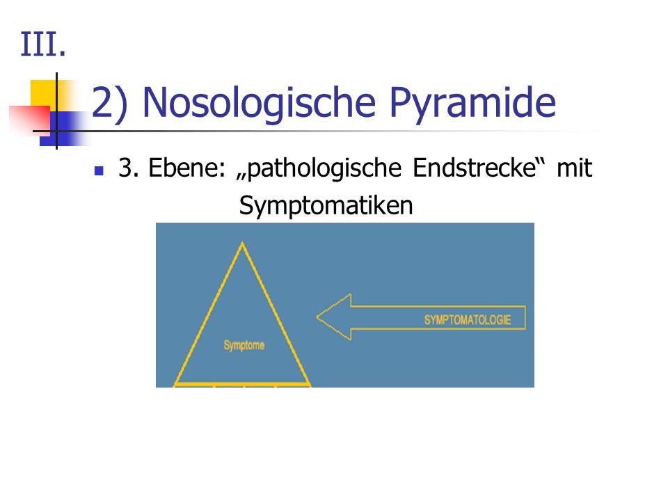 "2) Nosologische Pyramide 3. Ebene: ""pathologische Endstrecke"" mit Symptomatiken III."