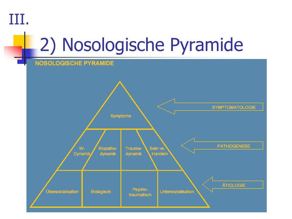 2) Nosologische Pyramide III.