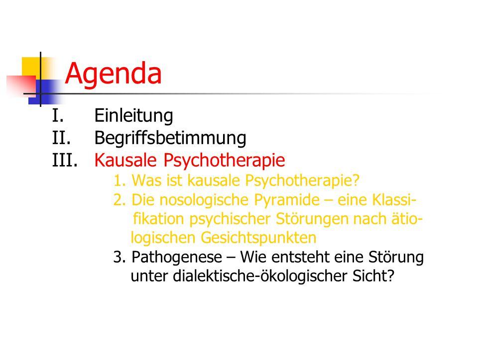Agenda I.Einleitung II. Begriffsbetimmung III.Kausale Psychotherapie 1. Was ist kausale Psychotherapie? 2. Die nosologische Pyramide – eine Klassi- fi