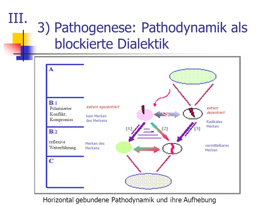 3) Pathogenese: Pathodynamik als blockierte Dialektik Horizontal gebundene Pathodynamik und ihre Aufhebung III. Polarisierter Konflikt, Kompromiss ref
