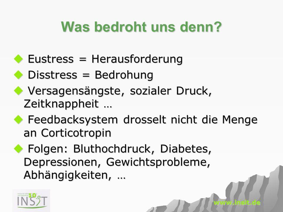10 www.insit.de Was bedroht uns denn?  Eustress = Herausforderung  Disstress = Bedrohung  Versagensängste, sozialer Druck, Zeitknappheit …  Feedba