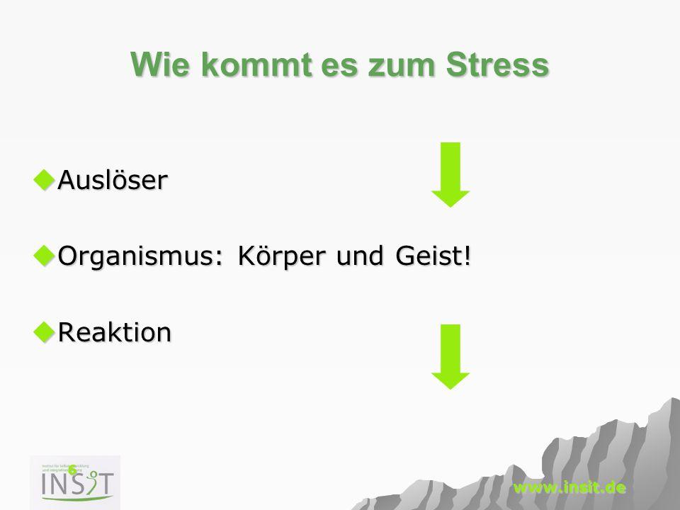 6 www.insit.de Wie kommt es zum Stress  Auslöser  Organismus: Körper und Geist!  Reaktion