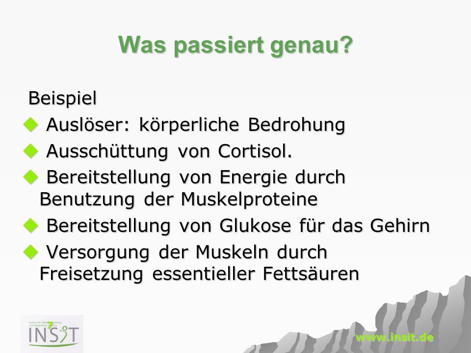 7 www.insit.de Was passiert genau? Beispiel Beispiel  Auslöser: körperliche Bedrohung  Ausschüttung von Cortisol.  Bereitstellung von Energie durch