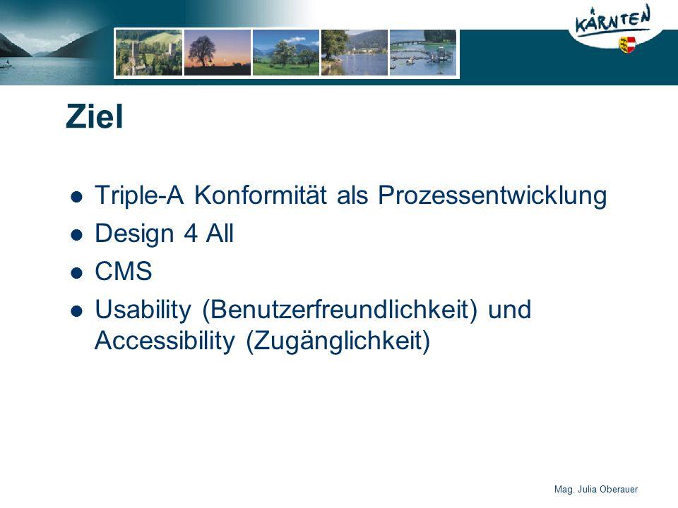 Mag. Julia Oberauer Ziel Triple-A Konformität als Prozessentwicklung Design 4 All CMS Usability (Benutzerfreundlichkeit) und Accessibility (Zugänglich