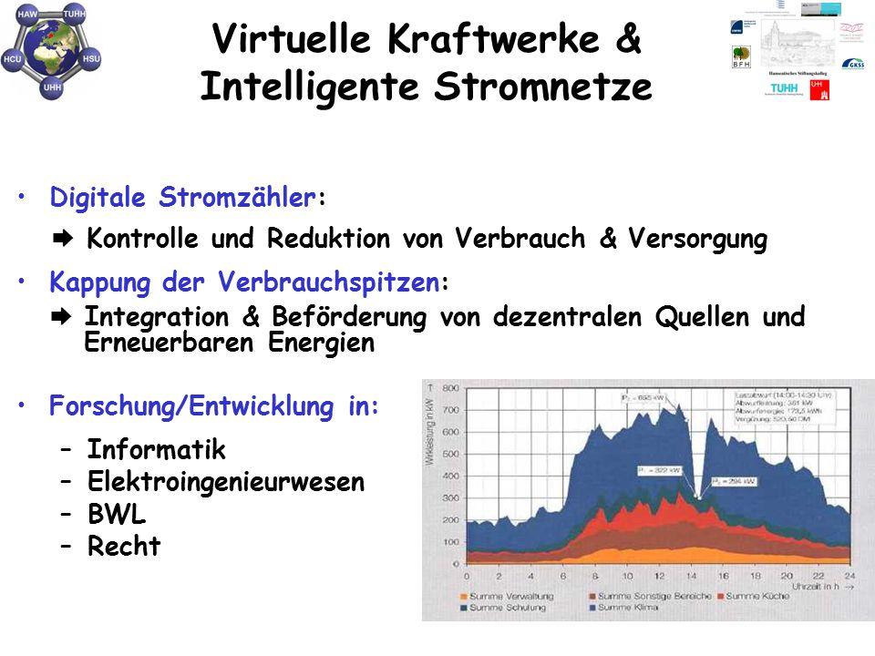 Virtuelle Kraftwerke & Intelligente Stromnetze Digitale Stromzähler:  Kontrolle und Reduktion von Verbrauch & Versorgung Kappung der Verbrauchspitzen