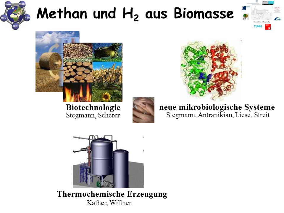 Methan und H 2 aus Biomasse Biotechnologie Stegmann, Scherer neue mikrobiologische Systeme Stegmann, Antranikian, Liese, Streit Thermochemische Erzeug