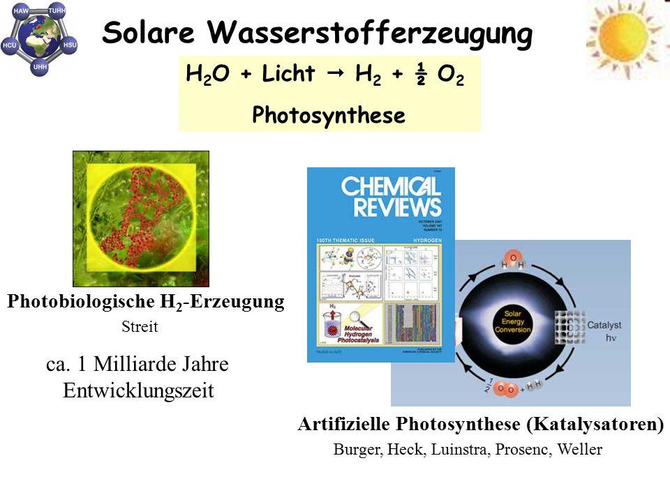 Solare Wasserstofferzeugung Burger, Heck, Luinstra, Prosenc, Weller Artifizielle Photosynthese (Katalysatoren) H 2 O + Licht  H 2 + ½ O 2 Photosynthe