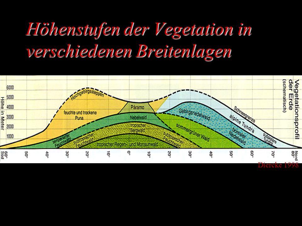 Höhenstufen der Vegetation in verschiedenen Breitenlagen Diercke 1998