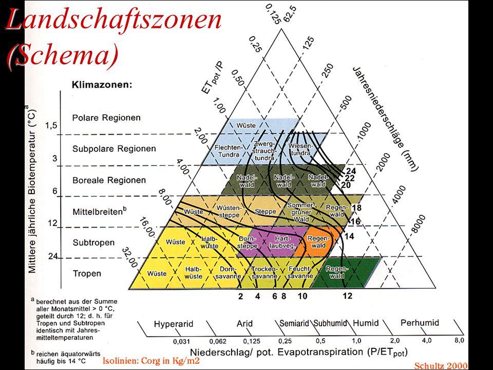 Landschaftszonen (Schema)