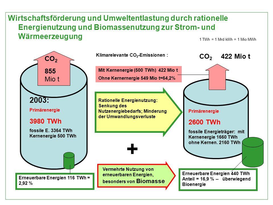 . Wirtschaftsförderung und Umweltentlastung durch rationelle Energienutzung und Biomassenutzung zur Strom- und Wärmeerzeugung 2003: Primärenergie 3980