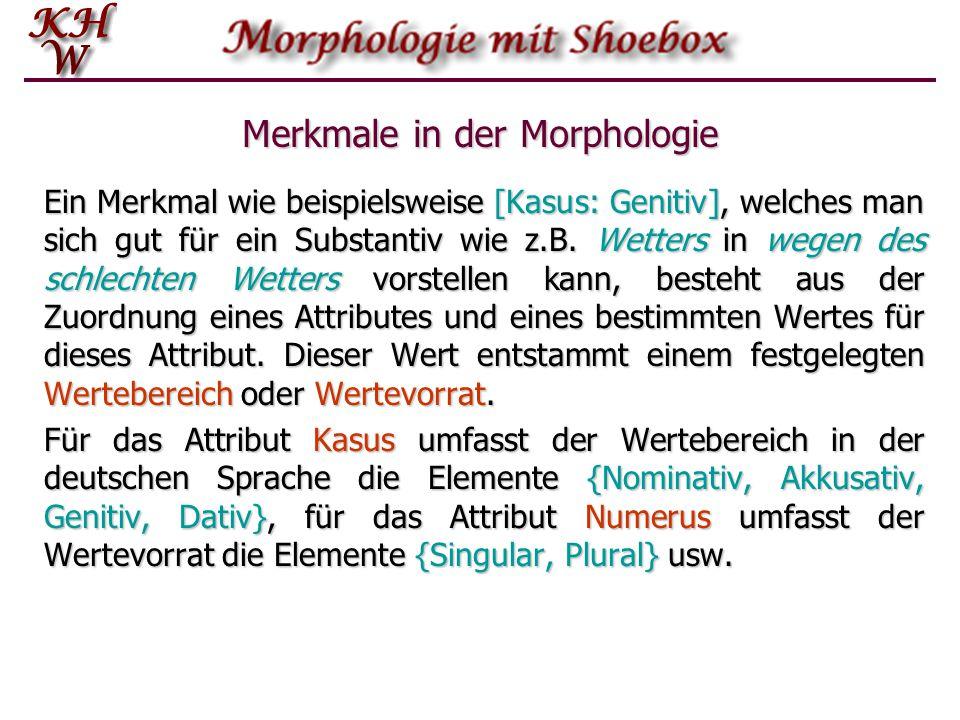 Merkmale in der Morphologie Ein Merkmal wie beispielsweise [Kasus: Genitiv], welches man sich gut für ein Substantiv wie z.B. Wetters in wegen des sch