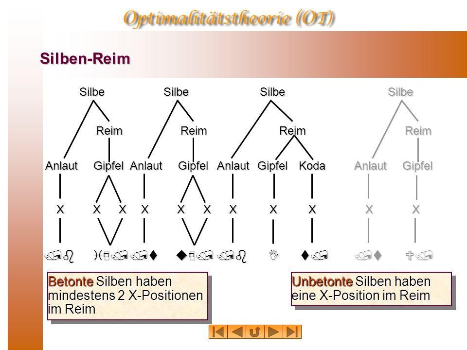 Silben-Reim Betonte Silben haben mindestens 2 X-Positionen im Reim SilbeAnlaut Reim Gipfel /biù/ XXXSilbeAnlaut Reim Gipfel /tuù/ XXX /bIt/ X KodaSilb