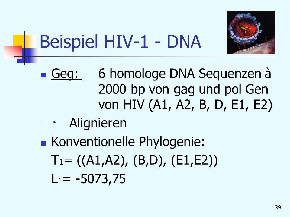 39 Beispiel HIV-1 - DNA Geg: 6 homologe DNA Sequenzen à 2000 bp von gag und pol Gen von HIV (A1, A2, B, D, E1, E2) Alignieren Konventionelle Phylogenie: T 1 = ((A1,A2), (B,D), (E1,E2)) L 1 = -5073,75