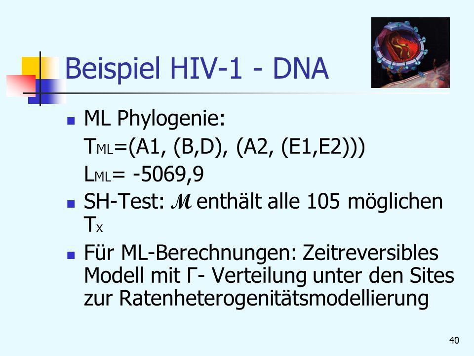 40 Beispiel HIV-1 - DNA ML Phylogenie: T ML =(A1, (B,D), (A2, (E1,E2))) L ML = -5069,9 SH-Test: M enthält alle 105 möglichen T x Für ML-Berechnungen: Zeitreversibles Modell mit Γ- Verteilung unter den Sites zur Ratenheterogenitätsmodellierung