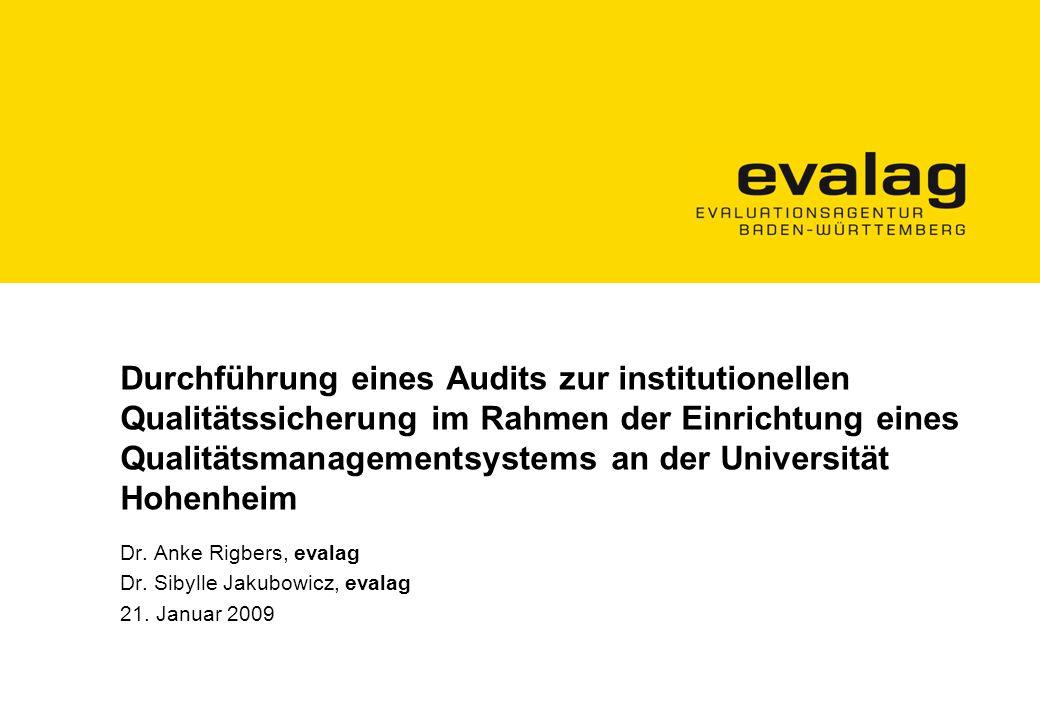 Durchführung eines Audits zur institutionellen Qualitätssicherung im Rahmen der Einrichtung eines Qualitätsmanagementsystems an der Universität Hohenheim Dr.