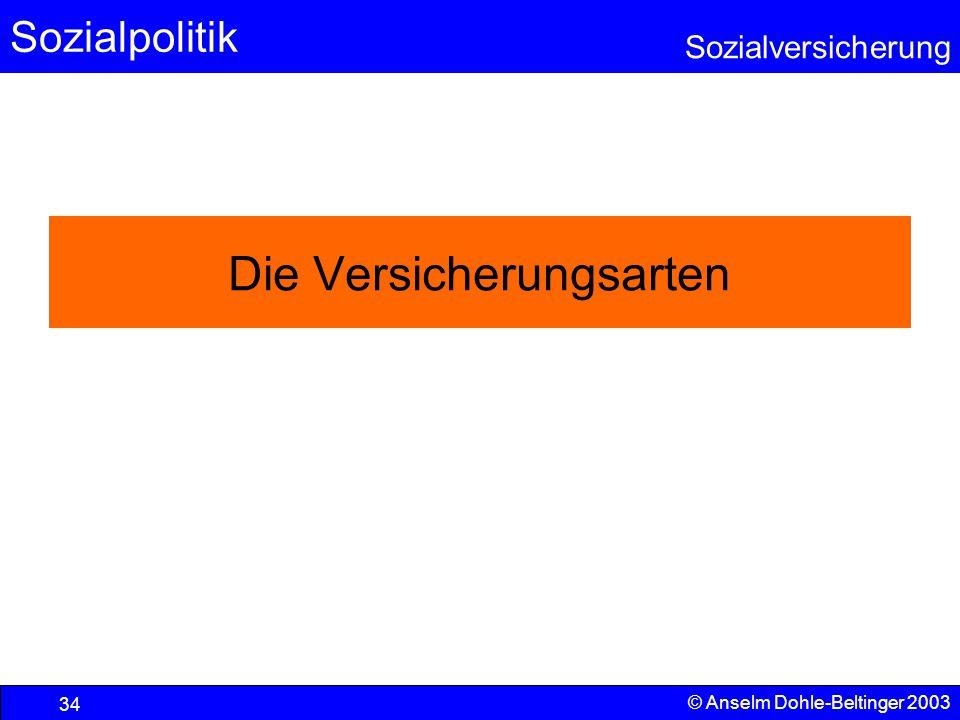 Sozialpolitik Sozialversicherung © Anselm Dohle-Beltinger 2003 35 Berufsunfähigkeitsversicherung Für die meisten ist ihre Arbeitskraft der wesentliche Quell von Kaufkraft und Wohlstand.
