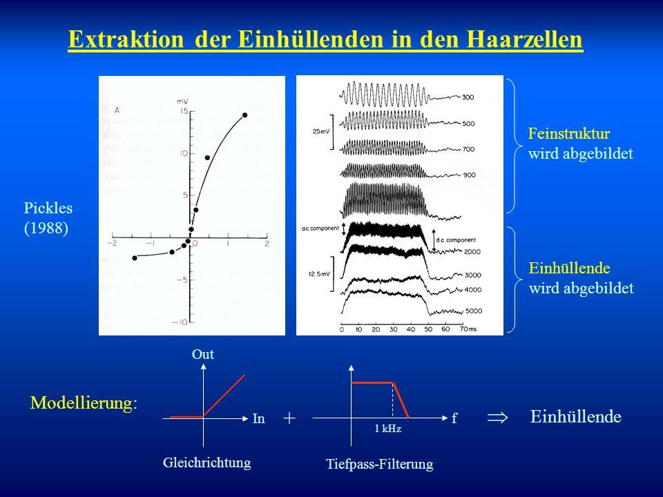 """Signalverarbeitung hinter der Cochlea Hören ist mehr als nur cochleäre Verarbeitung! Bisher """"nur"""" Zerlegung in Frequenzbänder durch Cochlea und Umwand"""