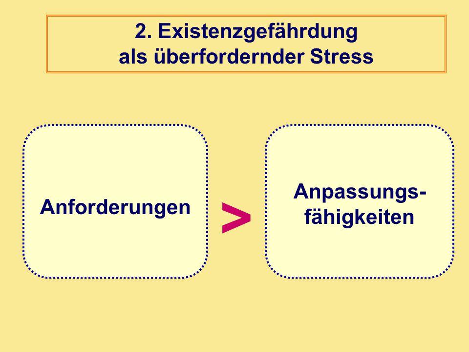 > Anforderungen Anpassungs- fähigkeiten 2. Existenzgefährdung als überfordernder Stress