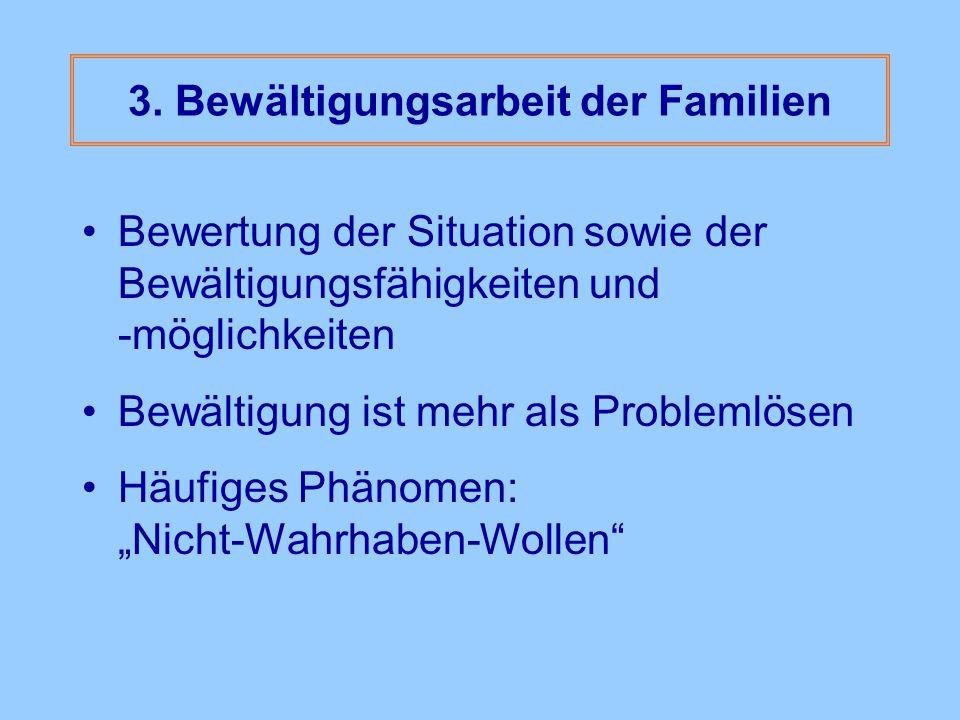 3. Bewältigungsarbeit der Familien Bewertung der Situation sowie der Bewältigungsfähigkeiten und -möglichkeiten Bewältigung ist mehr als Problemlösen