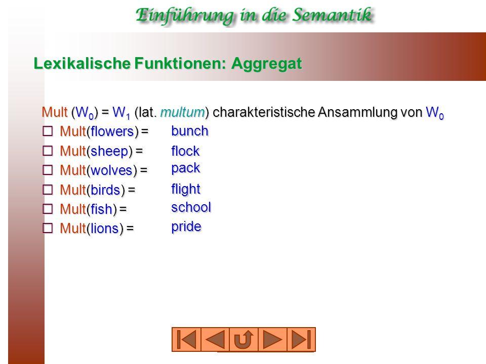 Lexikalische Funktionen: Aggregat Mult (W 0 ) = W 1 (lat.